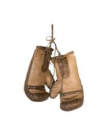 gants de boxe cuir